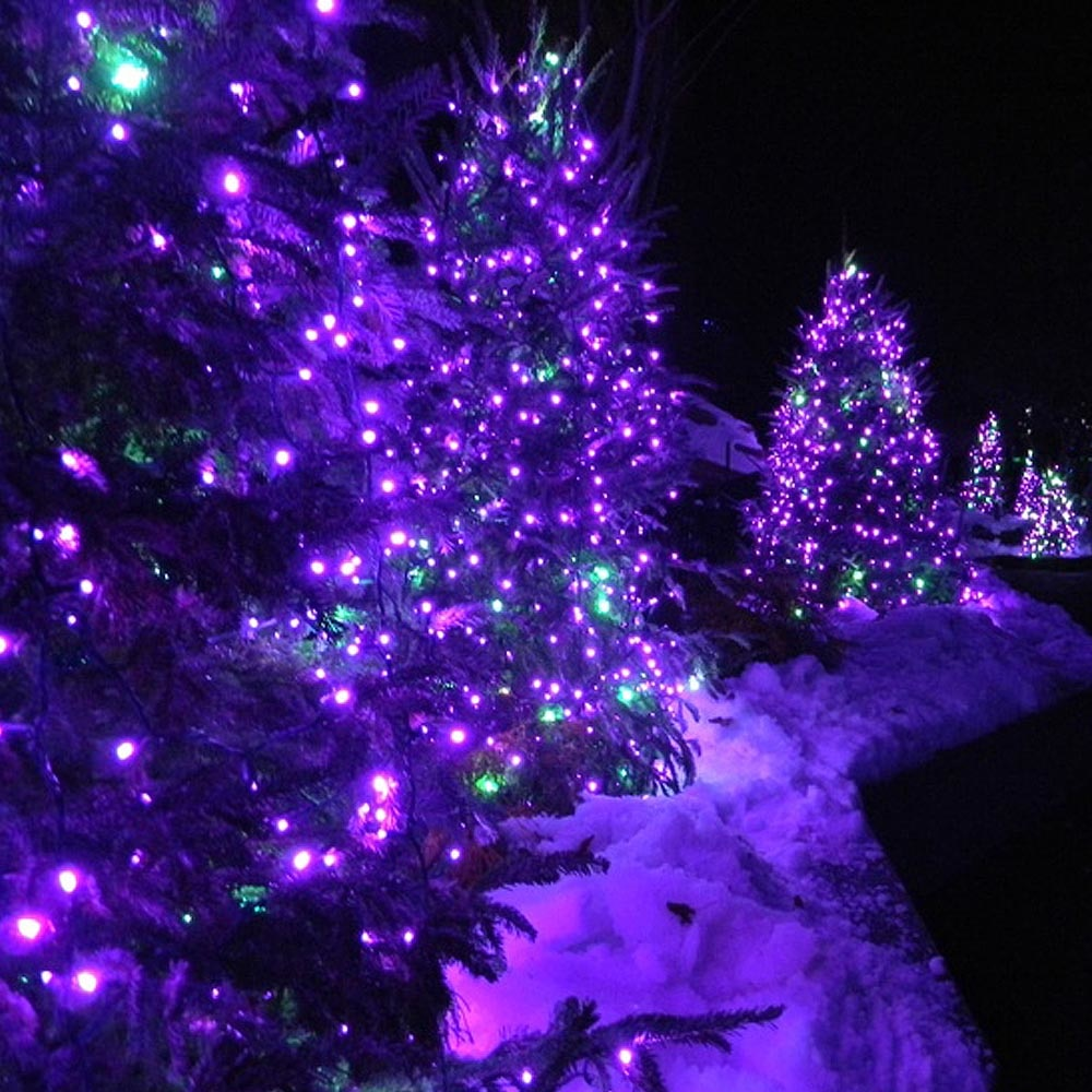 Purple Solar String Lights 72ft
